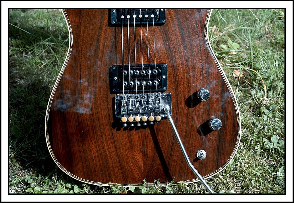 va a335 va carlton custom updated 9 16 18 valley arts guitars. Black Bedroom Furniture Sets. Home Design Ideas